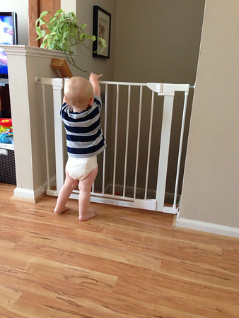 Another favorite past time ... throwing things over the baby gate.